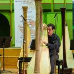 Harpistul Viktor Hartobanu
